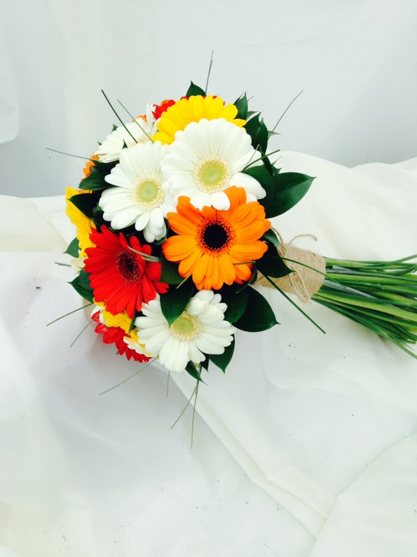 Multi - coloured Germini Wedding Package